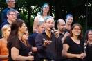 Gospelkonzert Markt Schwabener Weiher 08.07.2017_41